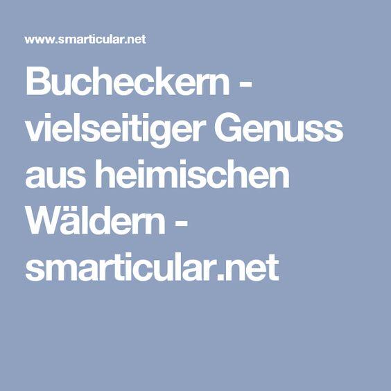 Bucheckern - vielseitiger Genuss aus heimischen Wäldern - smarticular.net