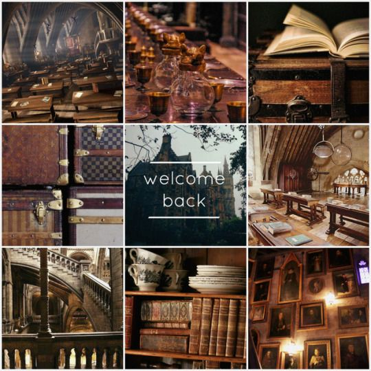 Welcome Back To Hogwarts Term Begins On 1 September Students Usually Reach Hogwarts Via The Hogwarts Expres Hogwarts Hogwarts Aesthetic Hogwarts School