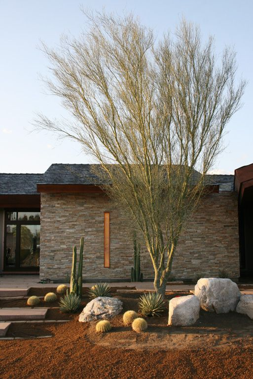 Palm springs palms and landscapes on pinterest for Palm springs landscape design