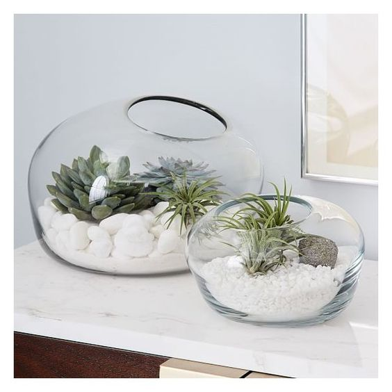 West Elm Organic Form Terrarium, Large ($44) ❤ liked on Polyvore featuring home, home decor, floral decor, clear, organic home decor, west elm and succulent terrarium