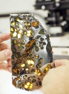 A meteorite found in Chubut, Argentina, featuring a metallic mirror finish and peridot-type stones, is displayed in a collections room at the Field Museum in Chicago