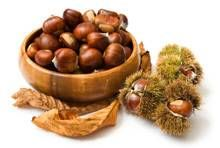 Chinese Chestnut Tree for Sale | Fast Growing Trees