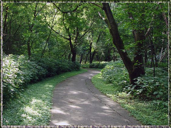 Lovers Lane: Travel The World, Lovers Lane, Yeess Pleasee, Photo, The Woods, Lane Yeess, Creativity Is 3