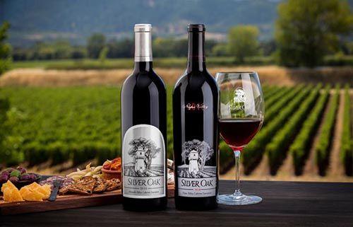 Đôi Điều Chưa Biết Về Các Loại Rượu Vang Mỹ Đến Từ California