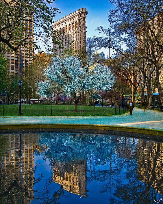 Spring In Madison Square Park - NYC - by Chris Lord