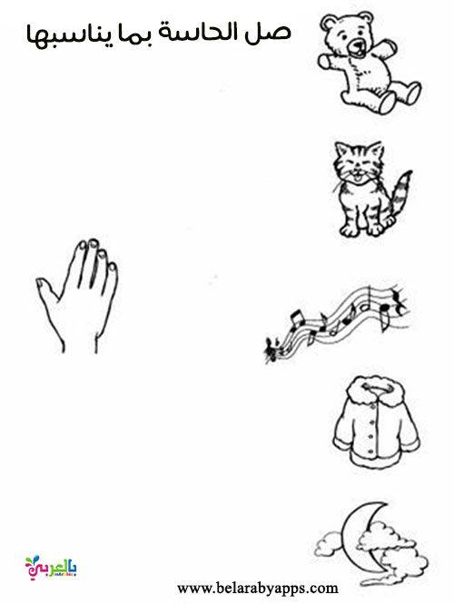 أوراق عمل عن الحواس الخمسة للأطفال جاهزة للطباعة تمارين عن الحواس الخمس بالعربي نتعلم Antiques Character