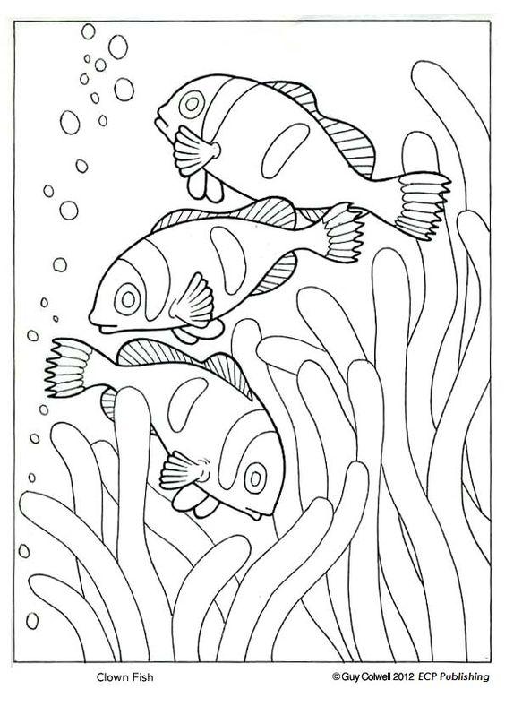 Clown fish coloring ocean animal coloring pages for Clown coloring pages for adults