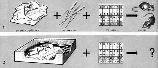 Эксперимент Ван Гельмонта с возникновением мышей путем  Эксперимент Ван Гельмонта с возникновением мышей путем самозарождения из грязных рубашек 1 опыт 2 контрольный опыт teoria 1 generacion
