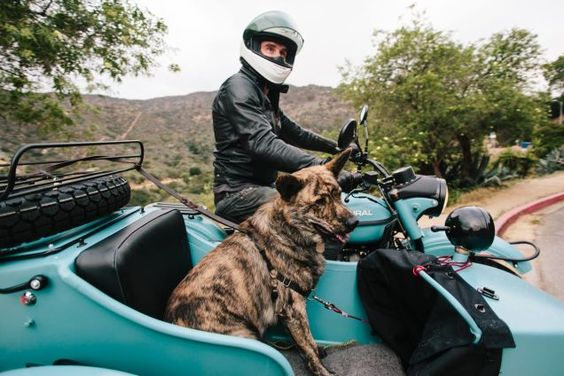 Capable of keeping you dry when it's wet, cool when it's hot, warm when it's cold and alive in a crash, motorcycle safety gear is the most advanced apparel this side of a space suit. Here's an excellent primer from Wes Siler of Indefinitely Wild.