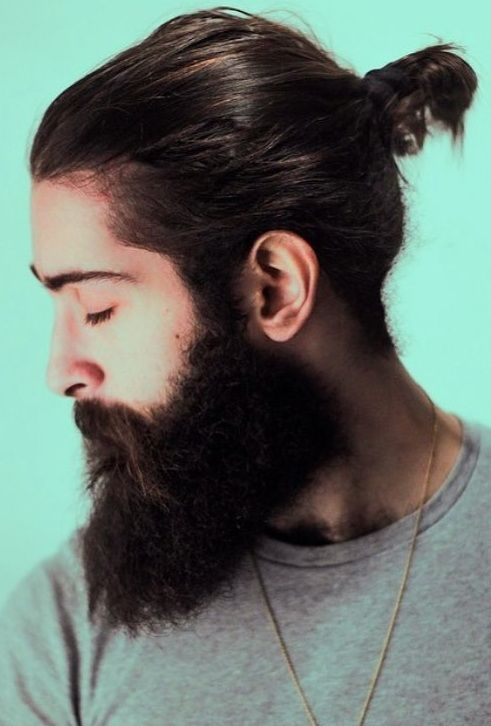 Long Beard With Short Ponytail Look For Men Beard Styles Ponytail Hairstyles Mens Ponytail Hairstyles