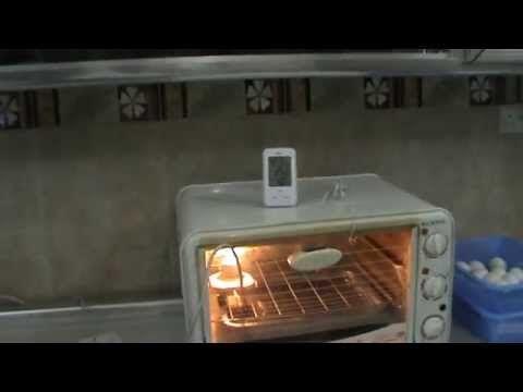 صناعة فقاسة بيض بمواد بسيطة داخل المنزل Youtube Dish Soap Make It Yourself