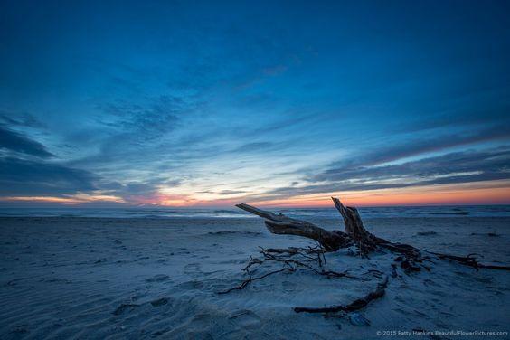 Sunrise at Assateague NS © 2015 Patty Hankins