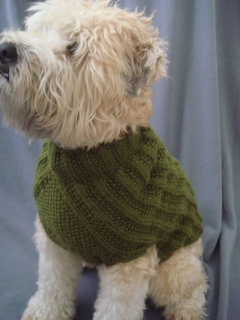 Knitting Patterns For Xxs Dogs : Pinterest   The world s catalog of ideas