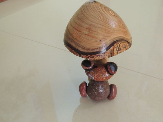 Sapo piedras rojas de Cangrejales,Chubut