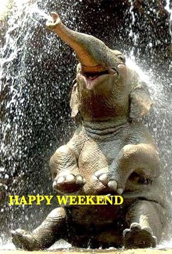 Happy Weekend Images: