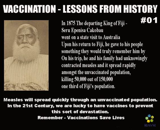 What is a good thesis statement for a research paper on the history of vaccines?