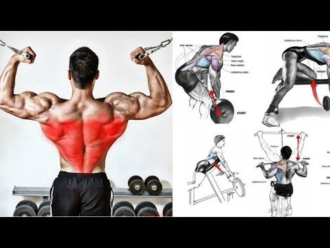 فجر عضلة الظهر من الداخل و الخارج أقوى التمارين Back Workout Youtube Back Workout Workout Youtube Videos