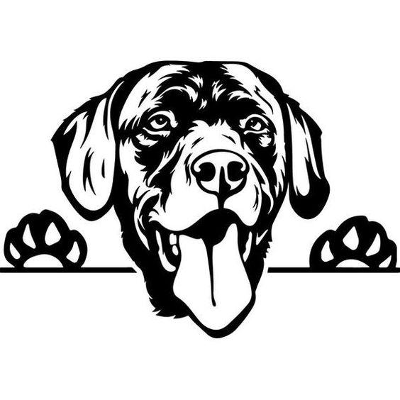 Pin On Dog Stencil