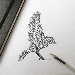 Bing Image Feed Pen Illustration Bird Drawings Drawings