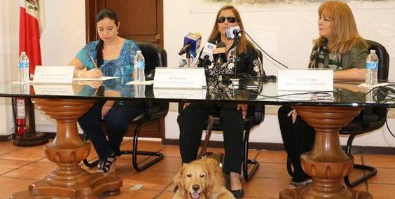 Trabaja Jalisco en el turismo accesible
