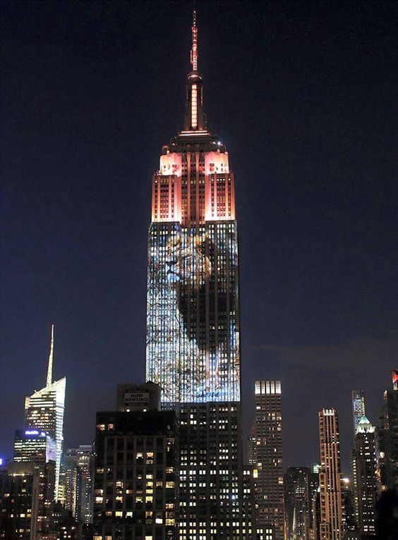 A touching tribute to endangered animals and Cecil the Lion in NYC   MyFascinating