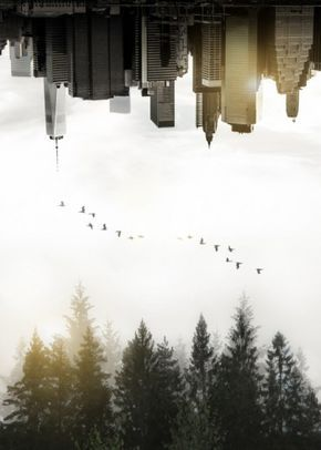 Duality A Double Exposure Image Of Foggy Swedish Fore Poster By Nicklas Gustafsson Displate Double Exposure Photography Double Exposure Exposure Photography