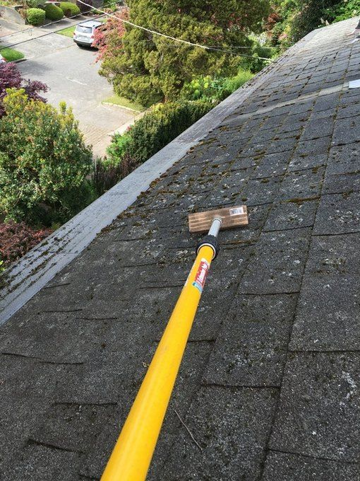 Rid Your Roof Of Moss Metal Roof Cost Roof Replacement Cost Roof