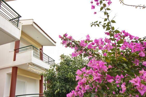 Διαμέρισμα   Προς Πώληση   EstateMyDay.com - Selling   Renting   Searching properties online