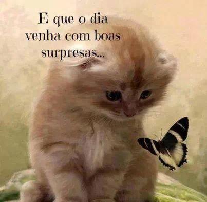#BomDia.