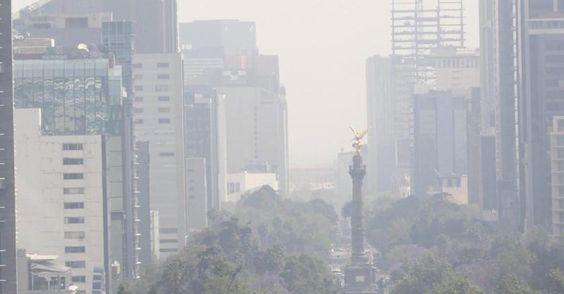 Feinstaub - Verschmutzte Luft könnte Auslöser für Alzheimer sein - http://ift.tt/2cyldg8
