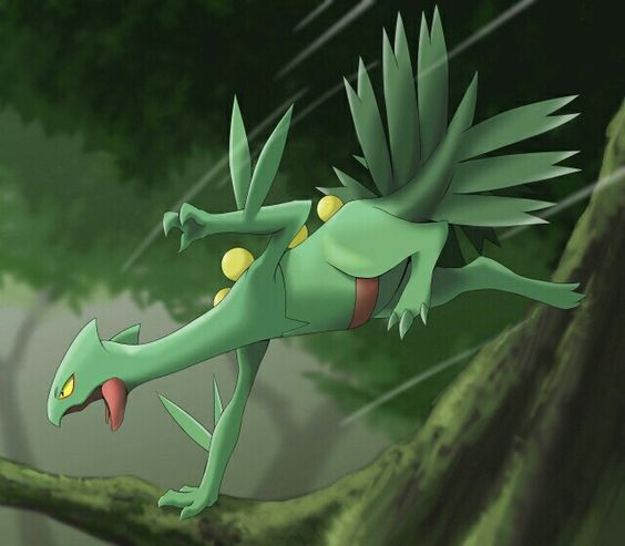 Sceptile -Pokemon-