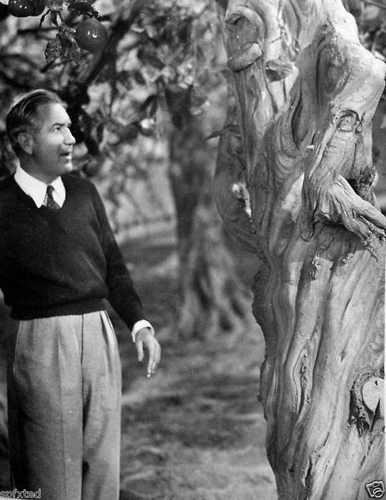 "Victor Fleming arguing with a tree, in ""The Wizard of Oz"".:"