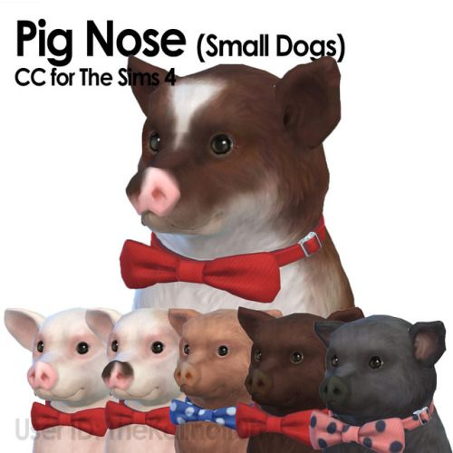 Pig Noses For Your Small Dogs Rs4 Pet Body Sims 4 Pets Sims Pets Sims 4