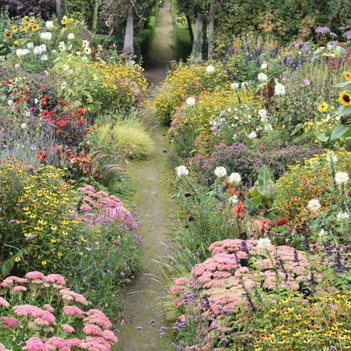 Design Advice For A Wild Informal Garden Southern Garden In 2020 Southern Garden Garden Design Plans Charming Garden