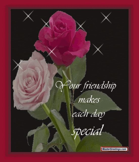 Pinterest the world s catalog of ideas for What color is the friendship rose
