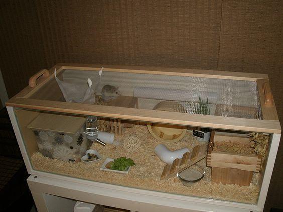 Ikea billy roborovski hamster cage hamster havens for Ikea hamster cage