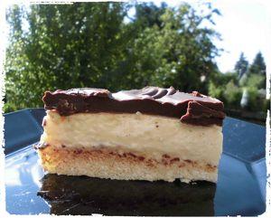 Schoko-Pudding-Kuchen - vegan38