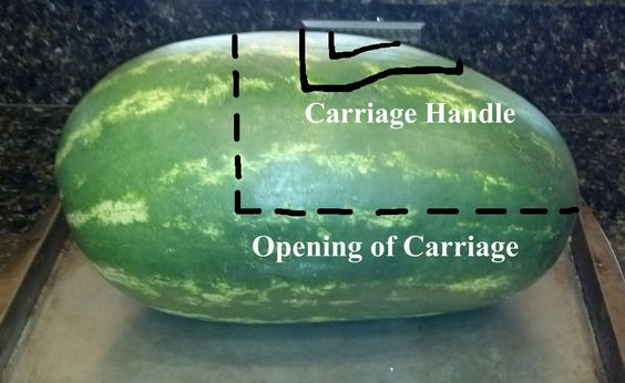 http://hubpages.com/video/How-to-Make-a-Watermelon-Baby-Carriage
