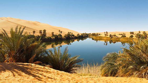 Oase in Wüste-Man unterscheidet Flussoasen, Quelloasen und Grundwasseroasen. In der Sahara – der größten Wüste der Erde – finden sich überwiegend Grundwasseroasen. Sie liegen dort, wo der Grundwasserspiegel nahe an die Erdoberfläche heranreicht. Regenwasser ist hier zwar ein knappes Gut, doch vor allem der algerische Teil der Sahara ist reich an fossilem Grundwasser. Eingeschlossen zwischen kilometerdicken Gesteinsschichten befindet sich eine Art unterirdisches Meer. Es stammt aus Zeiten, in…