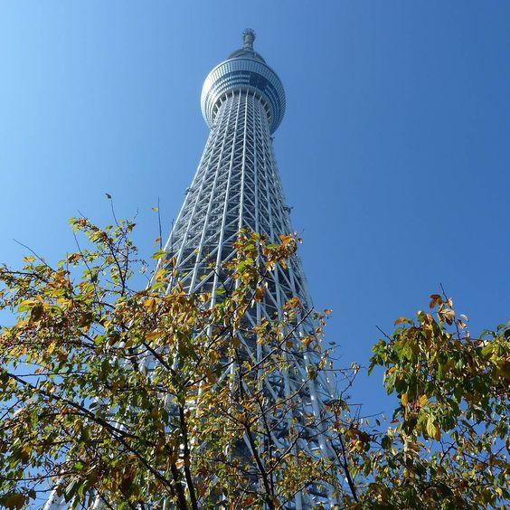 I miss you  #tokyoskytree #skytree #tokyo #japan #nippon #momiji #travel #nofilter (by earendilnenya)
