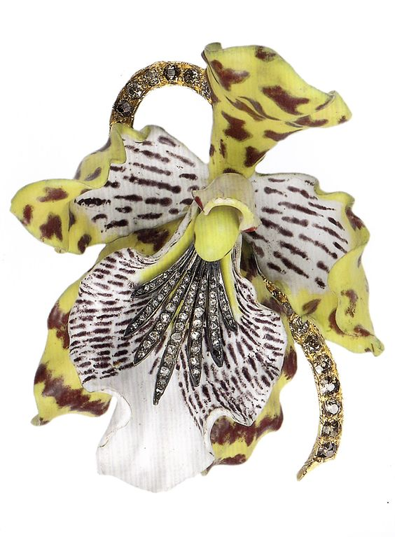 An antique Orchid brooch, designed by G. Paulding Farnham, circa 1889-93. The naturalistic brooch representing odontoglossum wyattianum, an orchid native to the mountainous region of Ecuador and Peru. Composed of gold, silver, diamonds and enamel. With French import mark of ET. 7 x 6cm. Source: Bejewelled by Tiffany 1837-1987. #PauldingFarnham #Tiffany #antique #brooch: