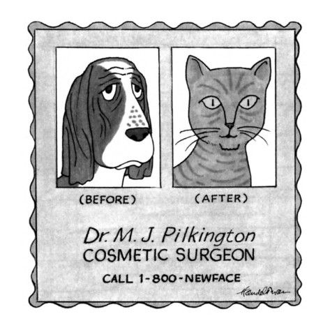 No Caption.Advertisement for cosmetic surgeon. There's a picture of a dog … - New Yorker Cartoon Poster Print  by J.B. Handelsman at the Condé Nast Collection