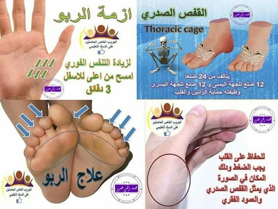 Pin By Rewa On رفلكسلوجي د محمد رضا عمرو Thoracic Cage Thoracic Reflexology
