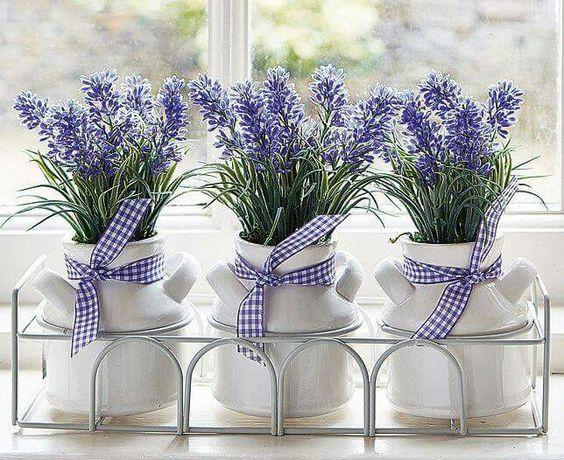 fiori - lavanda: