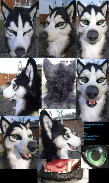back symbols for fur suits huskies