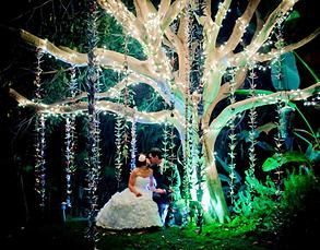 San Diego Private Outdoor Wedding Venue And CateringParadise Falls Oceanside