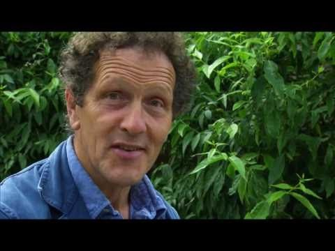 The Secret History Of The British Garden 4 Of 4 20th Century