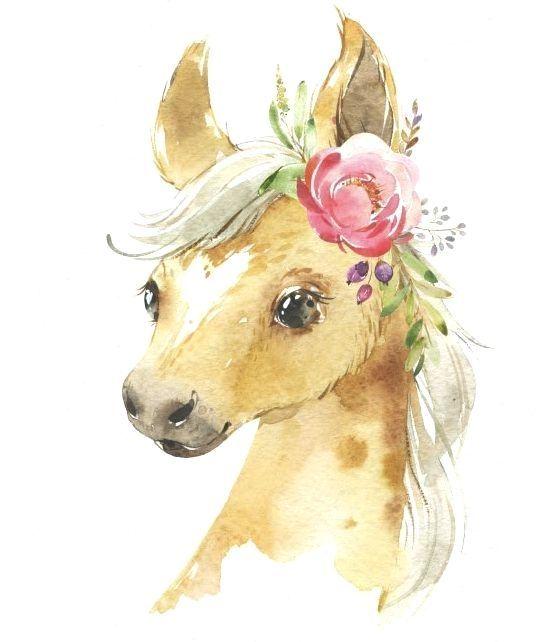 Bauernhof Fohlen Kalb Entlein Kleine Tiere Des Aquarells Clipart Babykuh Pferdeente Land Blumen Kinder Baby Animal Art Animal Drawings Baby Farm Animals
