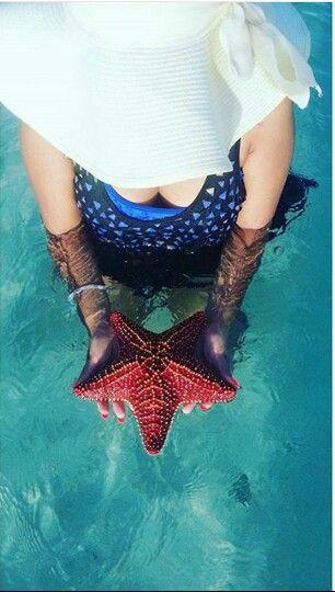 Mar de estrellas