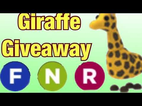5b13b65d4afbd4c076a57965a3826707 - How To Get A Giraffe In Adopt Me Roblox